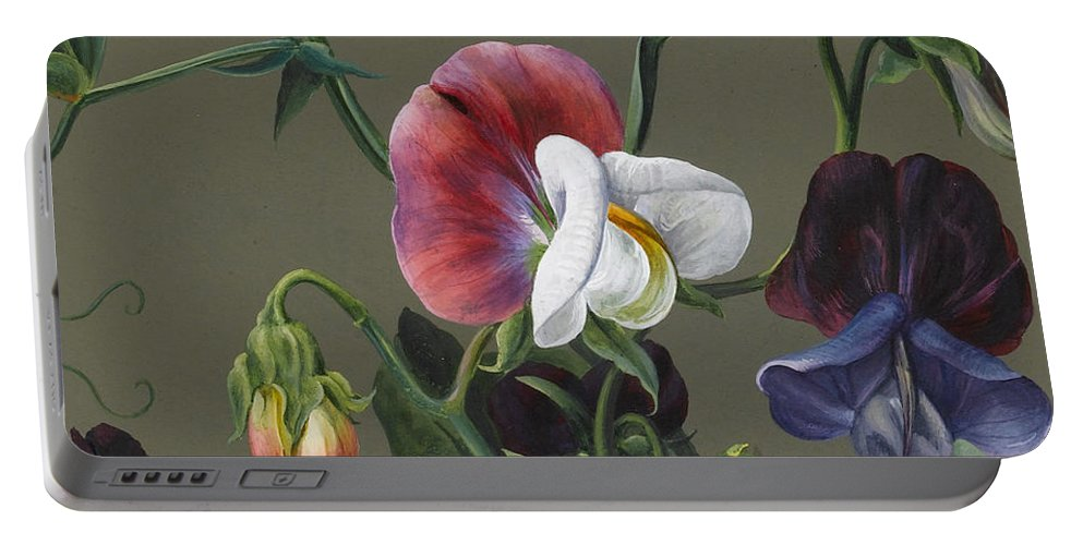 Sweet Peas Portable Battery Charger featuring the painting Sweet Peas And Violas by Louise D'Orleans