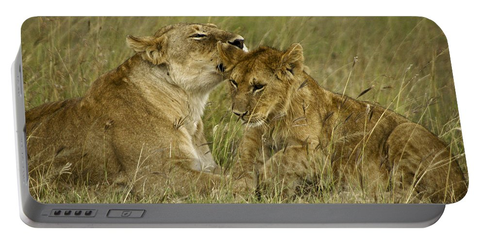 Africa Portable Battery Charger featuring the photograph Sweet Thing by Michele Burgess