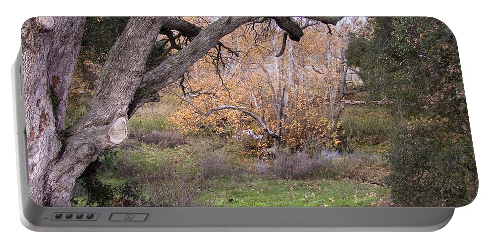 Landscape Portable Battery Charger featuring the photograph Sycamore Grove Fall by Karen W Meyer