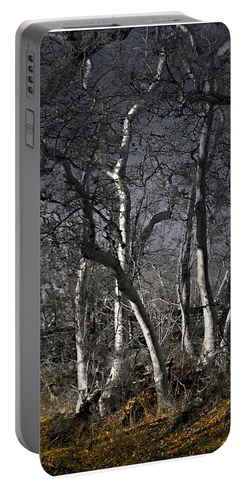 Landscape Portable Battery Charger featuring the photograph Sycamore Grove by Karen W Meyer