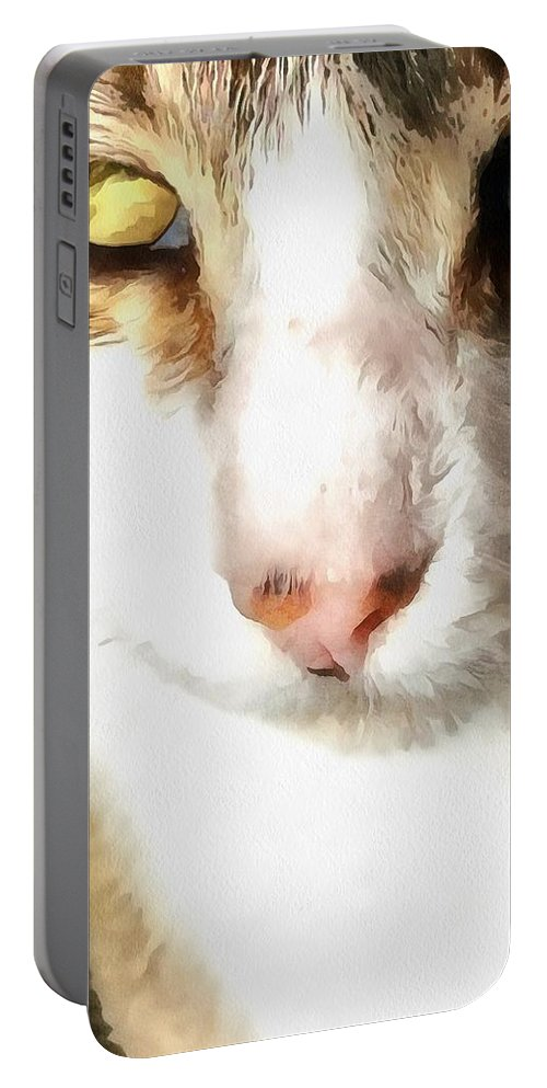 Portable Battery Charger featuring the mixed media Tabby by Janet Nielsen