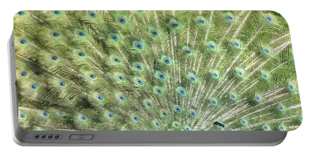 Peacock In Full Display Portable Battery Charger featuring the photograph Tailfeathers by Kelley Holland