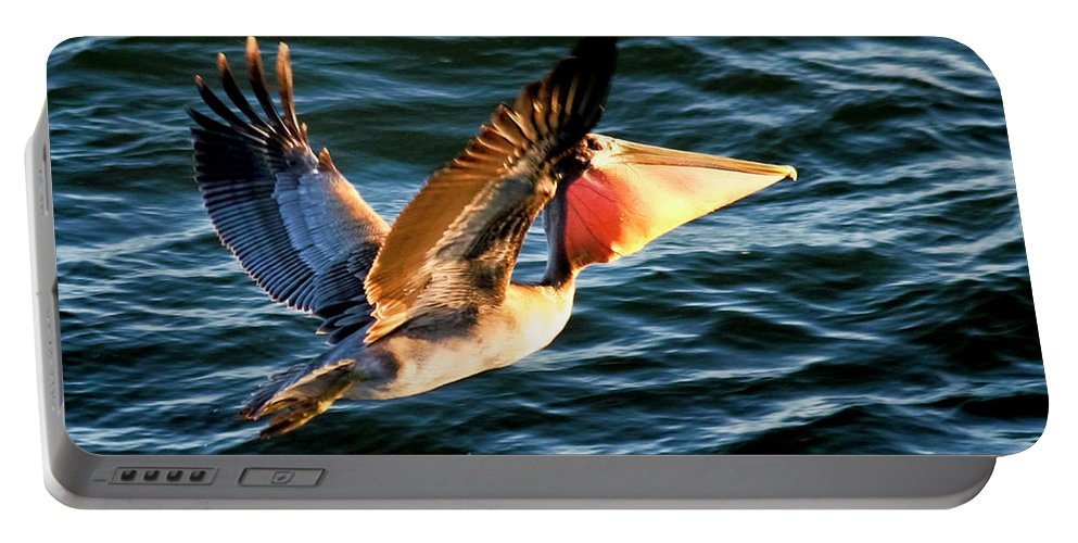 Birds Portable Battery Charger featuring the photograph Take-out by Albert Seger