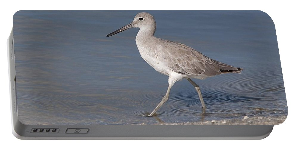 Wildlife Portable Battery Charger featuring the photograph Taking A Stroll by Kenneth Albin