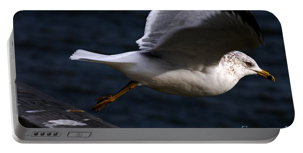 Clay Portable Battery Charger featuring the photograph Taking Flight by Clayton Bruster