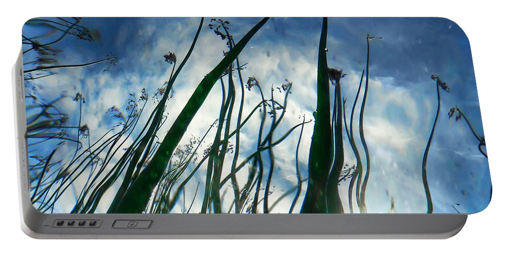 Abstract Portable Battery Charger featuring the photograph Talking Reeds by Tammy Wetzel