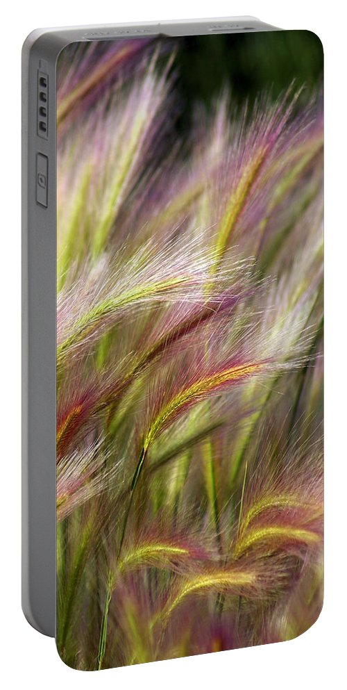 Plants Portable Battery Charger featuring the photograph Tall Grass by Marty Koch