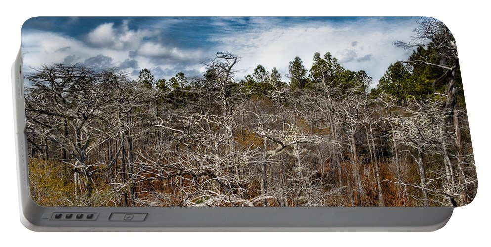 Landscapre Portable Battery Charger featuring the photograph Tate's Hell State Forest by Rich Leighton