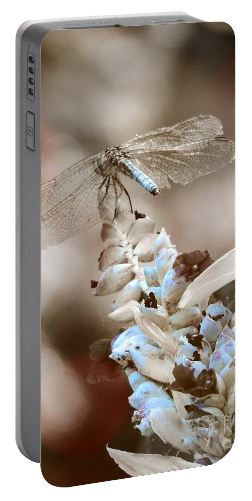 Dragonfly Portable Battery Charger featuring the photograph Tattered Wings B1 by Robert ONeil