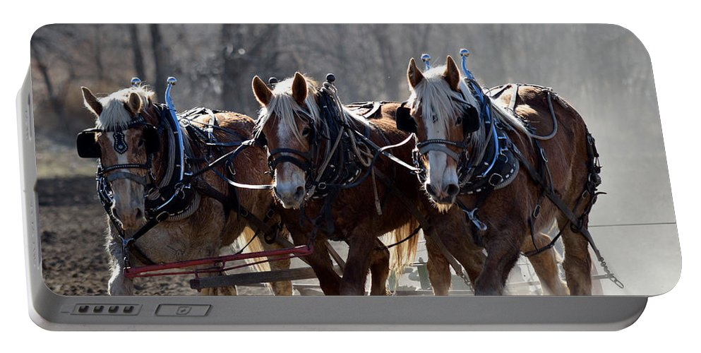 Horses Portable Battery Charger featuring the photograph Teamwork by Pam Romjue