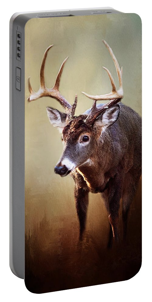 Whitetail Buck Portable Battery Charger featuring the photograph Ten Pointer II by TnBackroadsPhotos