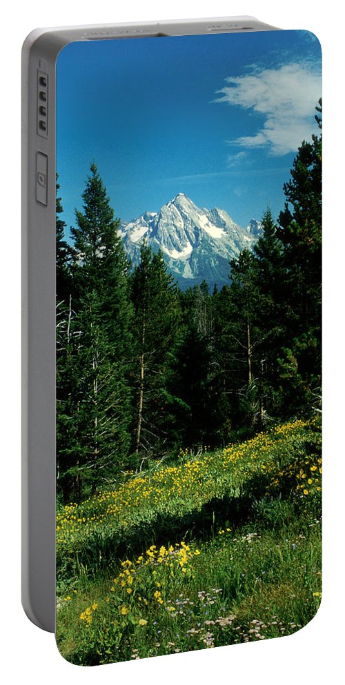 Wyoming Portable Battery Charger featuring the photograph Teton Meadow by Jerry McElroy