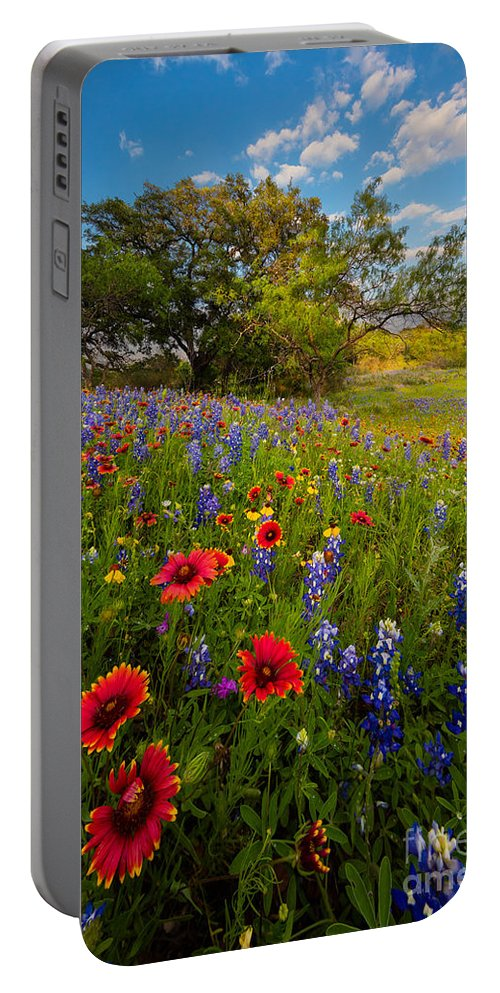 America Portable Battery Charger featuring the photograph Texas Paradise by Inge Johnsson