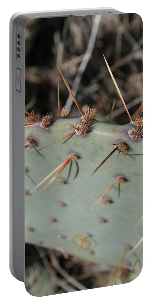 Spike Portable Battery Charger featuring the photograph Texas Spikes by Laddie Halupa