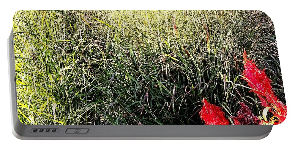 Red Portable Battery Charger featuring the photograph Texture And Detail by Ian MacDonald