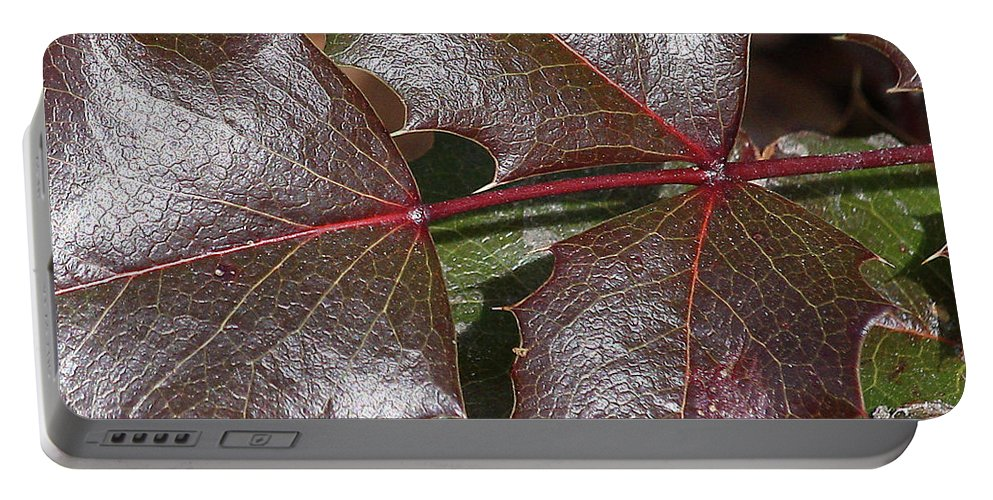 Texture Portable Battery Charger featuring the photograph Textured Leaves by Doris Potter