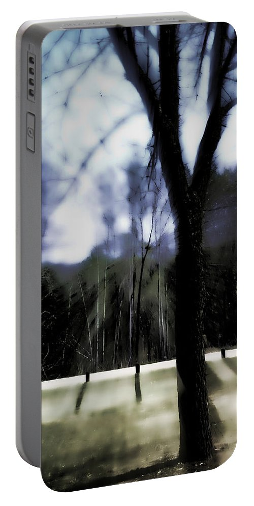 Landscape Portable Battery Charger featuring the photograph The All-knowing by Lauren Radke