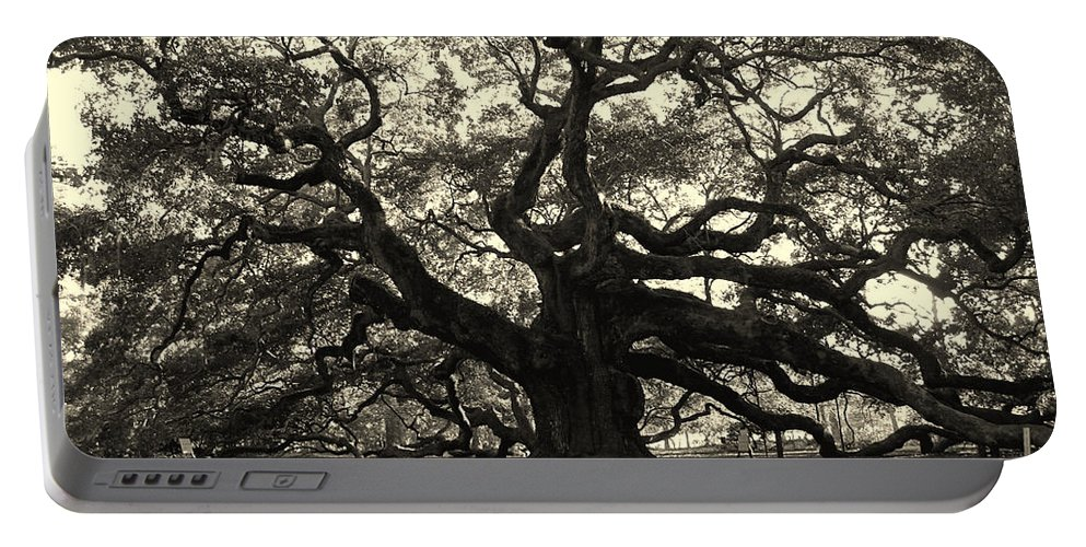 Angel Oak Portable Battery Charger featuring the photograph The Angel Oak by Susanne Van Hulst