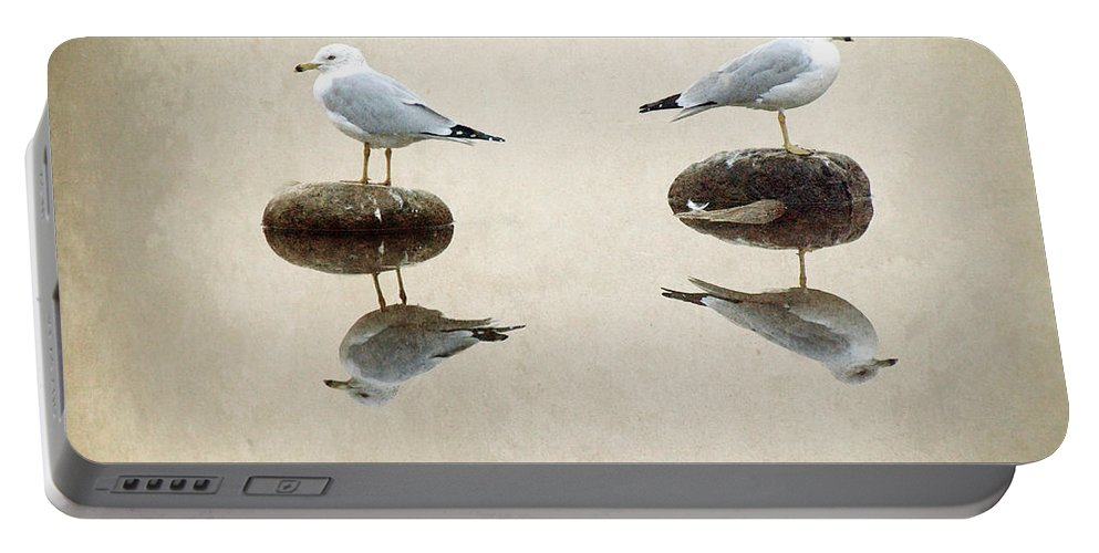 Seagulls Portable Battery Charger featuring the photograph The Argument by Tara Turner