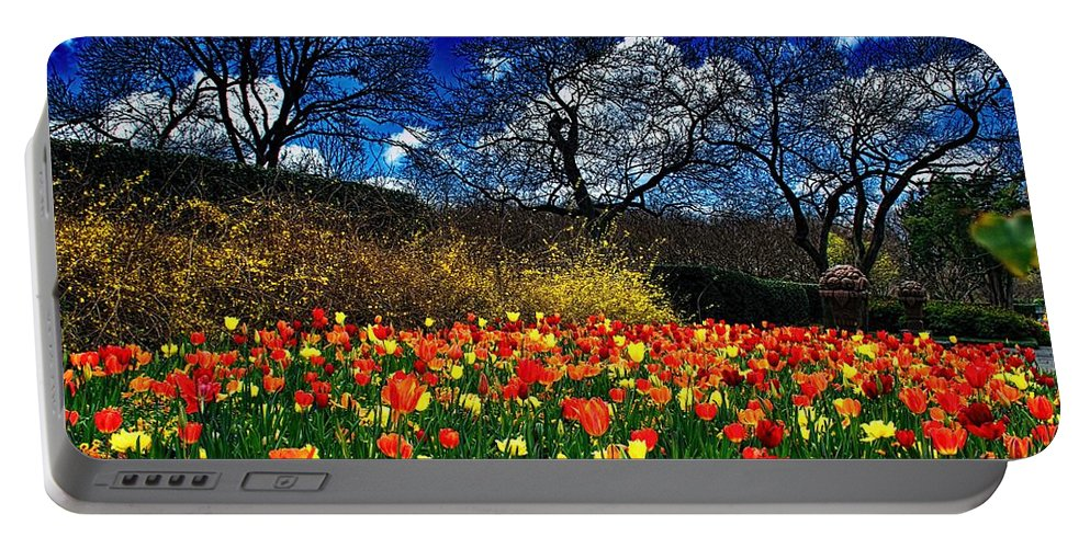 Diana Mary Sharpton Photography All Rights Reserve 2016 Portable Battery Charger featuring the photograph The Arrival Of A Season by Diana Mary Sharpton