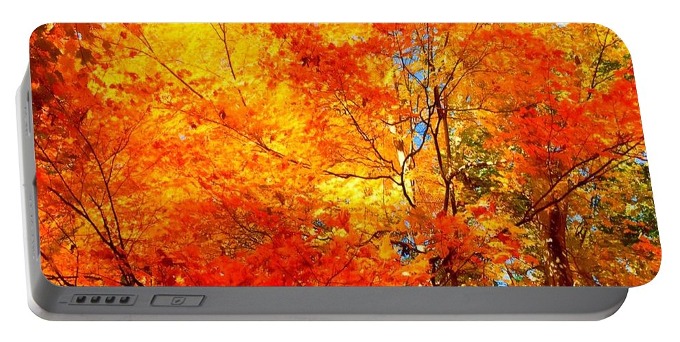 Trees Portable Battery Charger featuring the painting The Beauty Of Autumn by MaryLee Parker