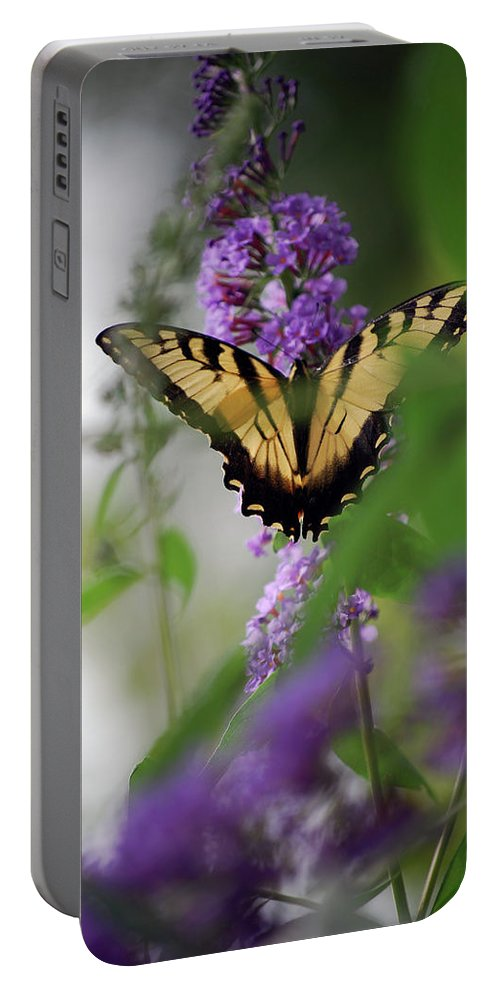 Swallowtail Portable Battery Charger featuring the photograph The Beauty Of Spring by Lori Tambakis