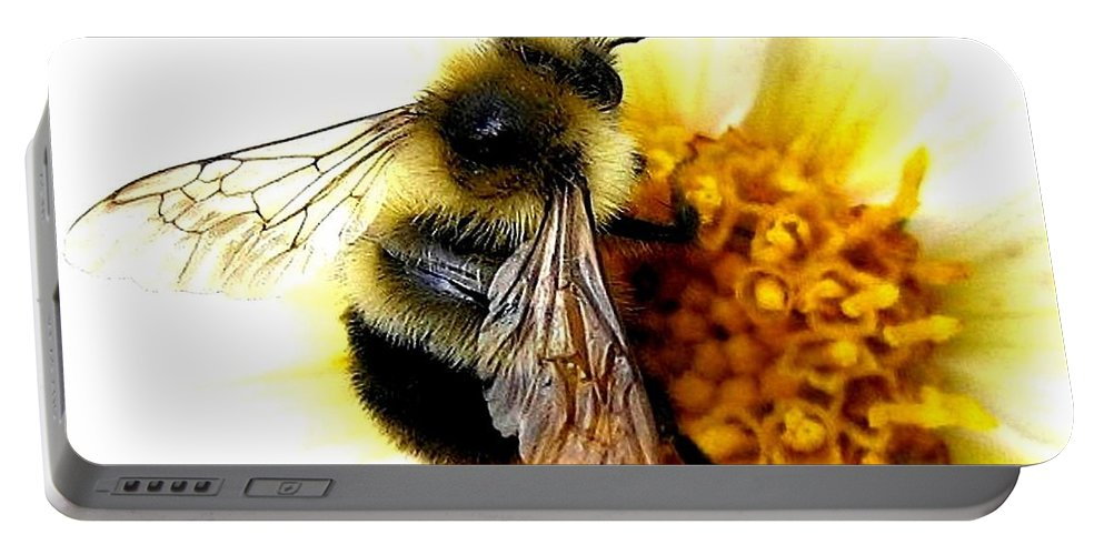 Honeybee Portable Battery Charger featuring the photograph The Buzz by Will Borden