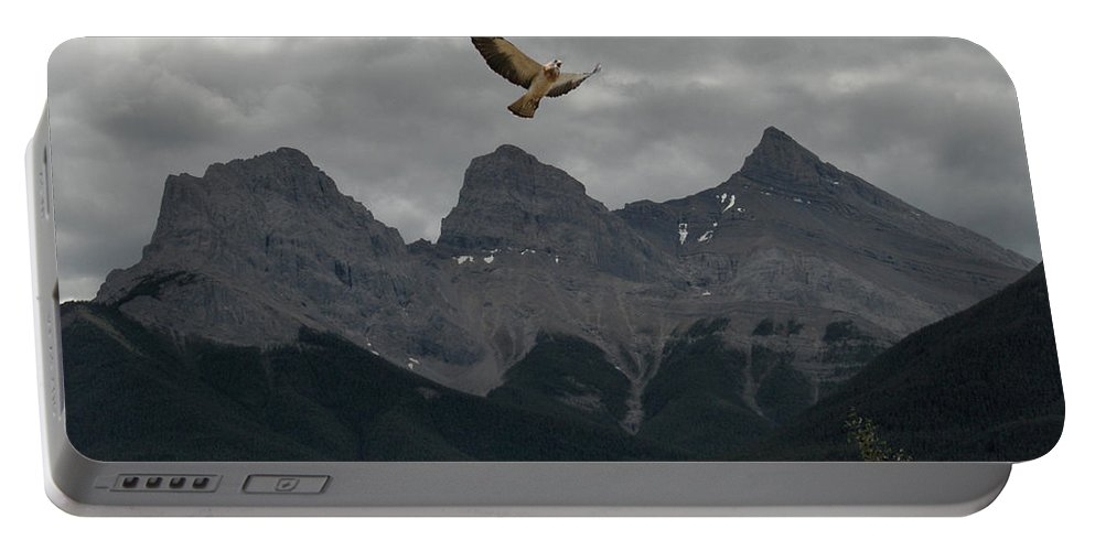 Hawk Mountains Trees Woods Banff Alberta Wild Bird Hunter Flying Three Sisters Portable Battery Charger featuring the photograph The Calling by Andrea Lawrence