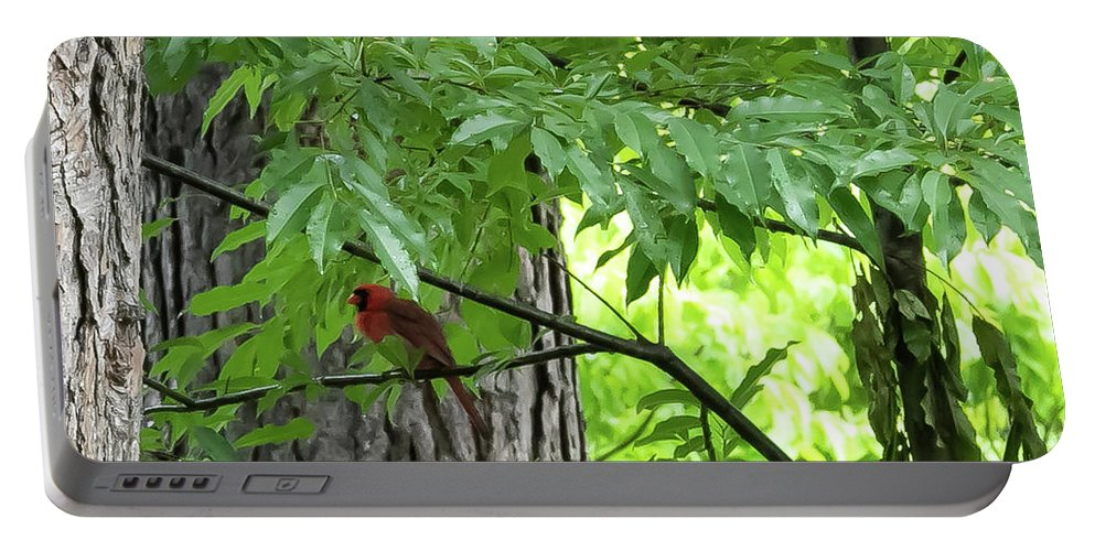 Bird Portable Battery Charger featuring the digital art The Cardinal In The Woods by Ed Stines