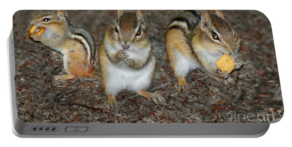 Chipmunks Portable Battery Charger featuring the photograph The Chipmunks by Wanda-Lynn Searles
