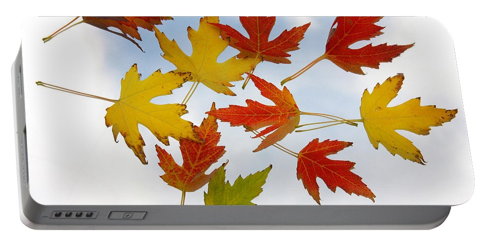 Portable Battery Charger featuring the photograph The Colors Of Fall by James BO Insogna
