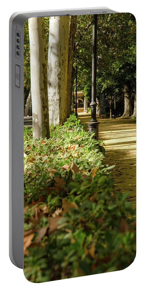 Foliage Portable Battery Charger featuring the photograph The Coming Of Autumn by Andrea Mazzocchetti