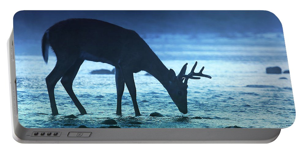 Portable Battery Charger featuring the photograph The Cool Of The Night - Square by Rob Blair