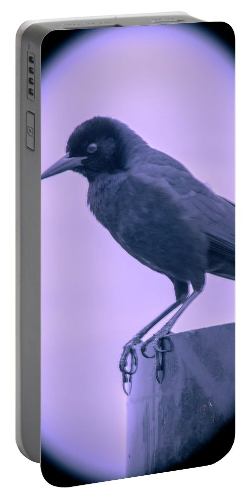 Crow Portable Battery Charger featuring the photograph The Crow by Michael Frizzell