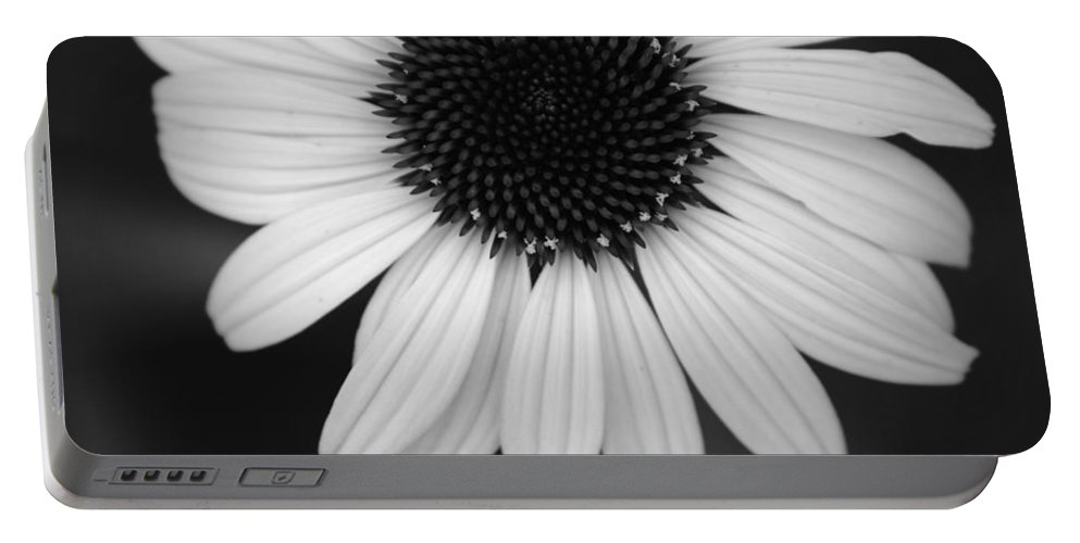 Flower Portable Battery Charger featuring the photograph The Dark In The Light by Jessica Myscofski