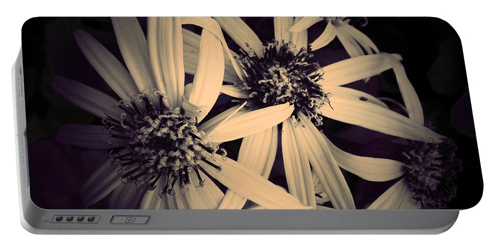 Flowers Portable Battery Charger featuring the photograph The Embrace by Tara Turner