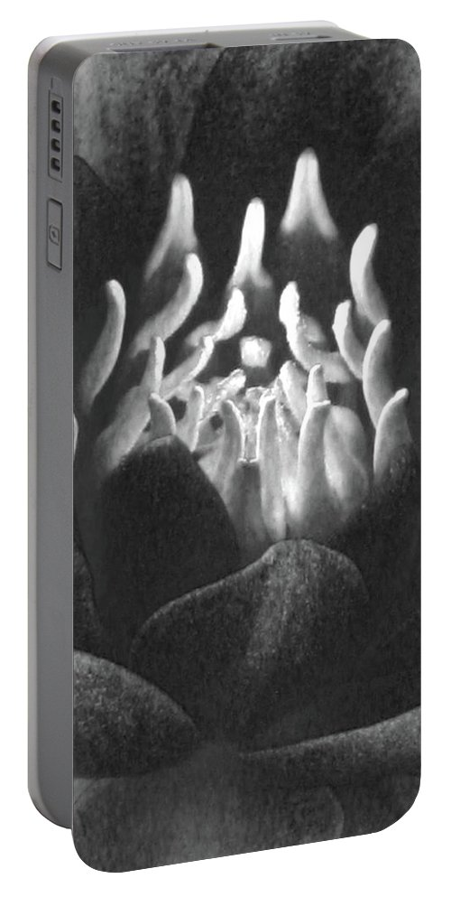 Water Lily Portable Battery Charger featuring the photograph The Fire Inside - Water Lily - Bw by Pamela Critchlow