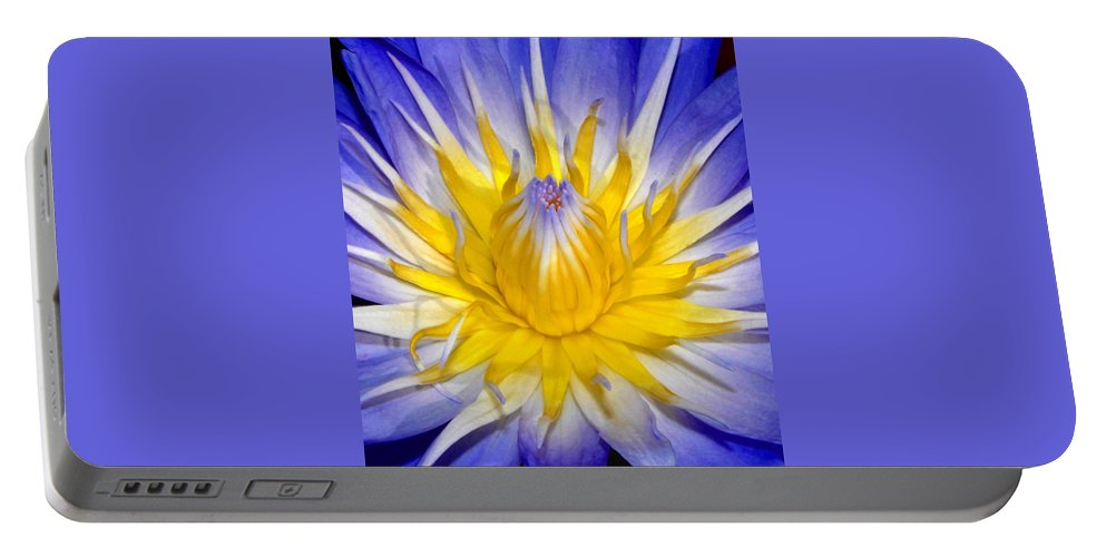 Flower Portable Battery Charger featuring the photograph The Flame Of Beauty Spca1 by David Lee Thompson