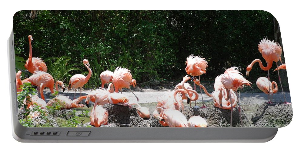 Animal Portable Battery Charger featuring the photograph The Flamingos by Rob Hans