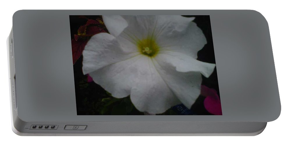 Flower Portable Battery Charger featuring the photograph The Flower Collection by Sylvester Wofford