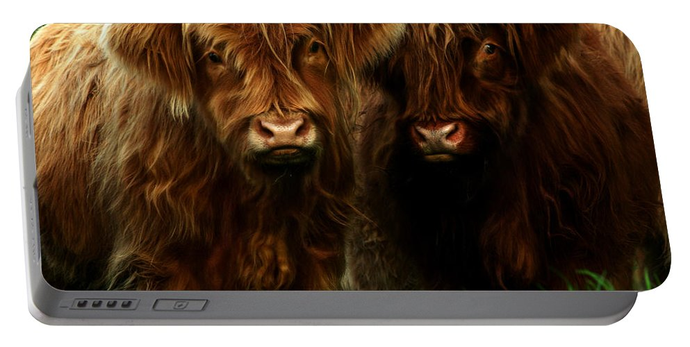 Heilan Coo Portable Battery Charger featuring the photograph The Fluffy Cows by Angel Ciesniarska