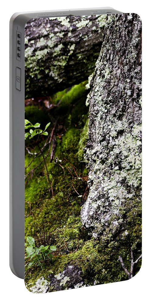 Moss Portable Battery Charger featuring the photograph The Forest Floor Bluestone State Park West Virginia by Teresa Mucha
