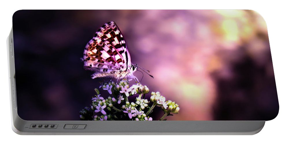 Butterfly Portable Battery Charger featuring the photograph The Forest Throne by Alf Kelty