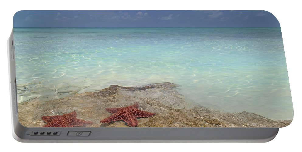 Starfish Portable Battery Charger featuring the photograph The Gate Keepers by Betsy Knapp
