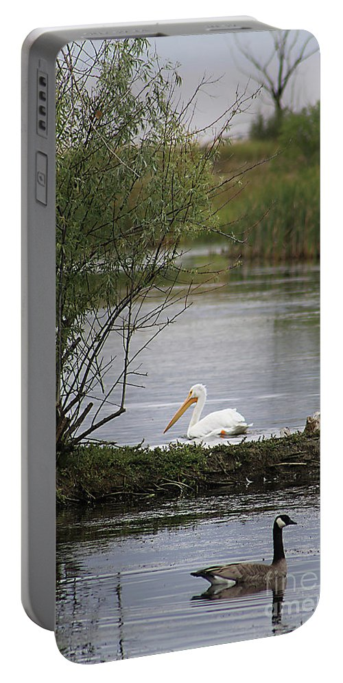 Goose Portable Battery Charger featuring the photograph The Goose And The Pelican by Alyce Taylor