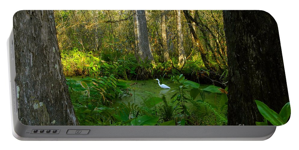 Corkscrew Swamp Portable Battery Charger featuring the photograph The Great Corkscrew Swamp by David Lee Thompson
