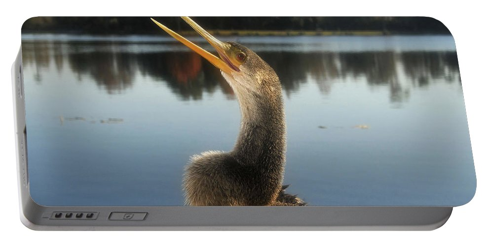 Golden Crested Anhinga Portable Battery Charger featuring the photograph The Great Golden Crested Anhinga by David Lee Thompson