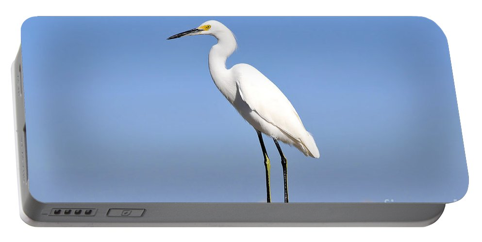 Great Snowy Egret Portable Battery Charger featuring the photograph The Great Snowy Egret by David Lee Thompson