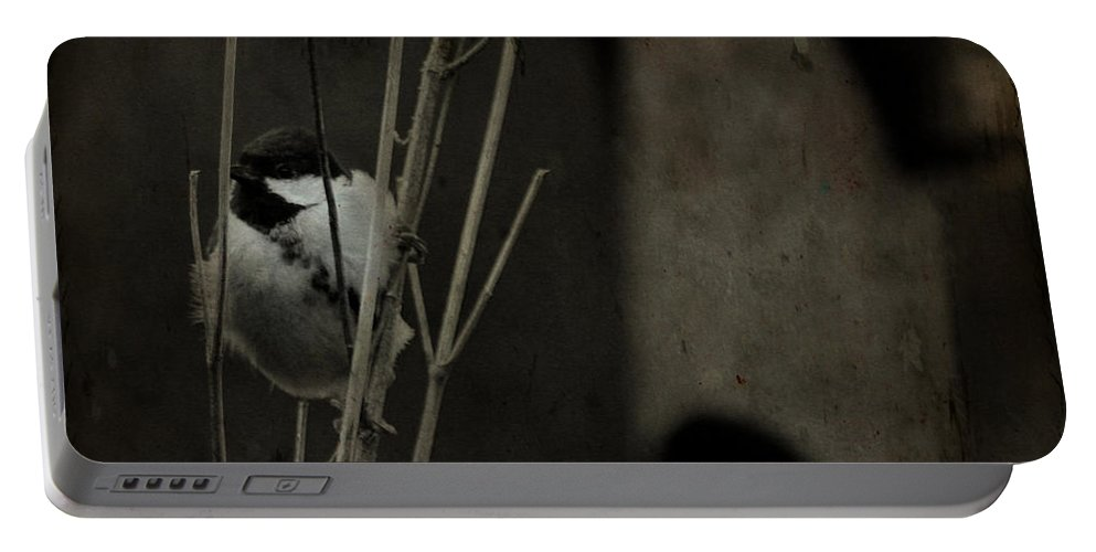 Tit Portable Battery Charger featuring the photograph The Great Tit by Angel Ciesniarska