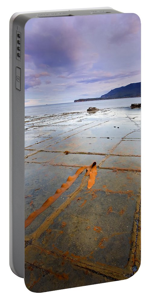 Tesselated Pavement Portable Battery Charger featuring the photograph The Grid by Mike Dawson